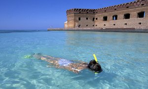 Dry Tortugas, Garden Key Snorkling at Fort Jefferson, U.S.A., Florida,