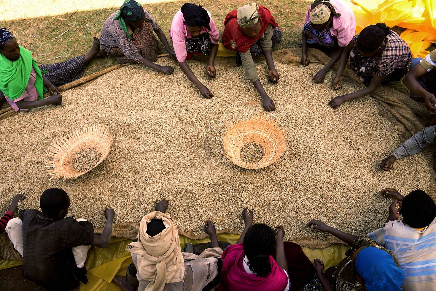 Coffee is big business in Ethiopia, home to some of the world's best beans © Reza / Getty Images