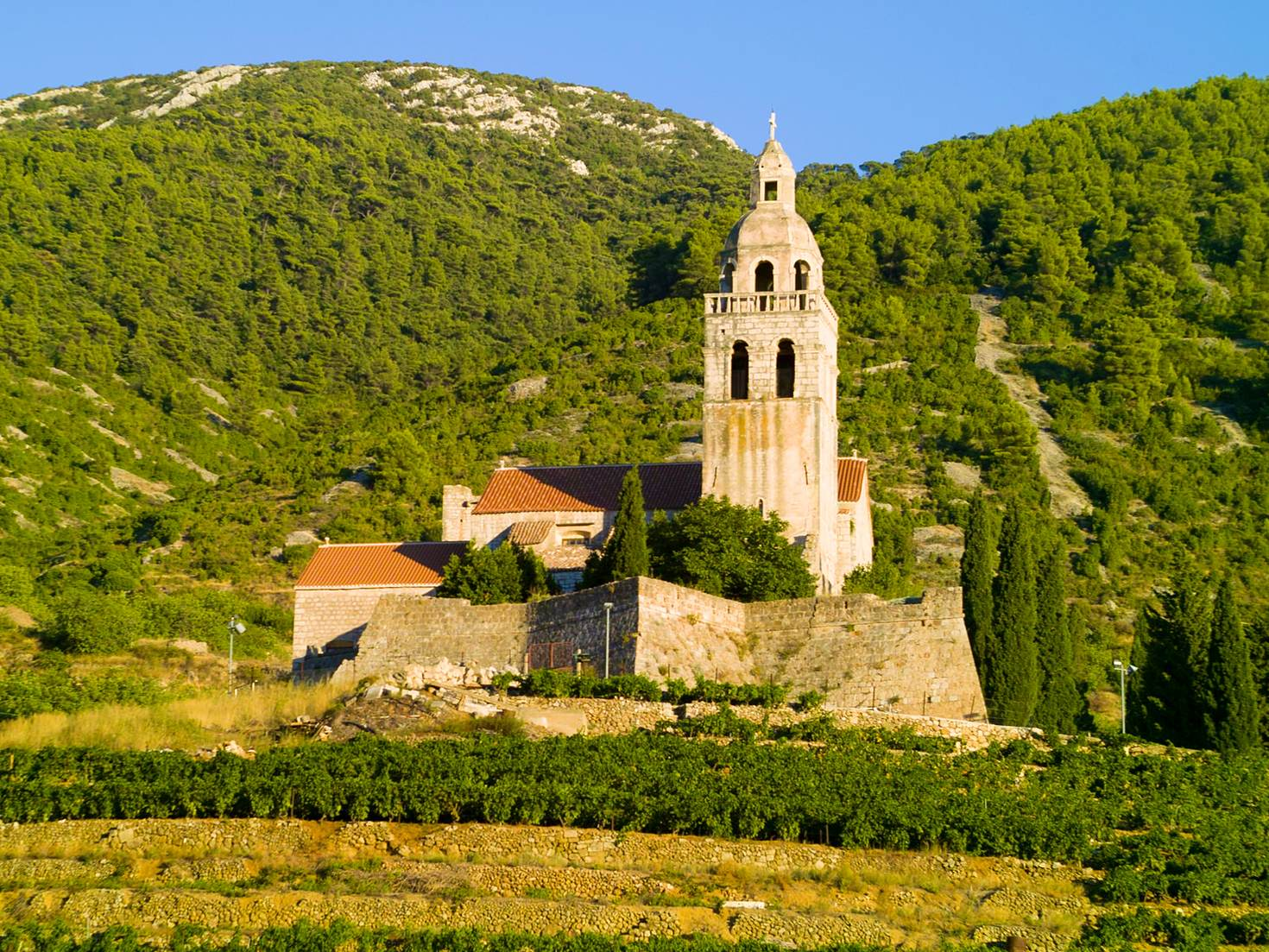 Vineyard and monastery on the Croatian island of Vis © Marnel Tomic / Getty Images